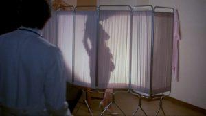 Barbi Benton nude behind a silhouette